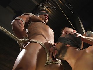 Gay lover forced fucked and made to swallow in full BDSM